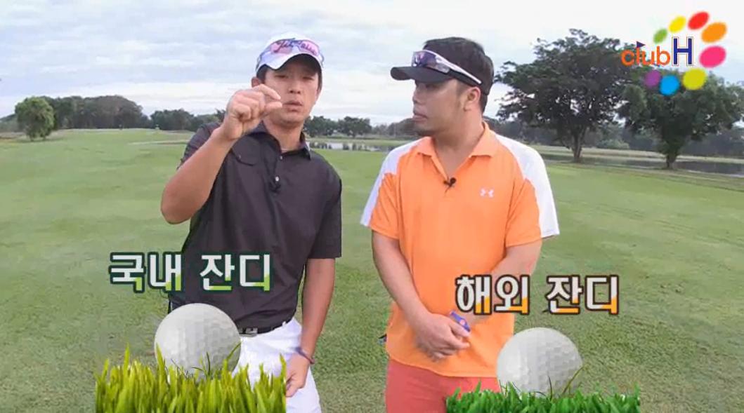 [골프좀잘치자] 양잔디에서 잘치는 방법