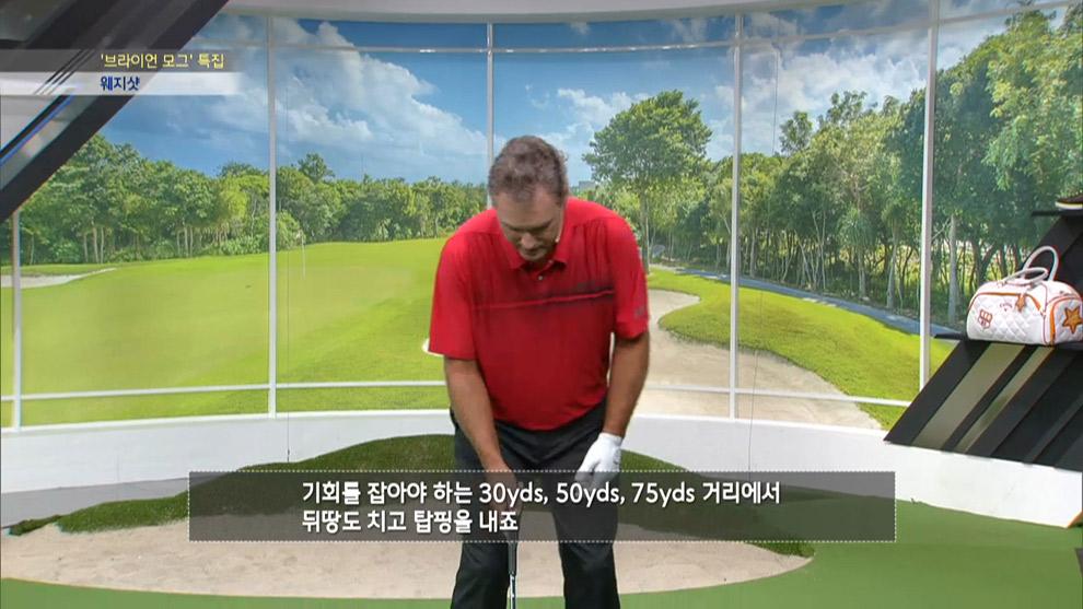 브라이언 모그 - 웨지 샷